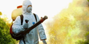 Top 10 Best Pest Control Companies in Los Angeles, USA